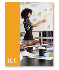 Training Developers Courses (TDC)