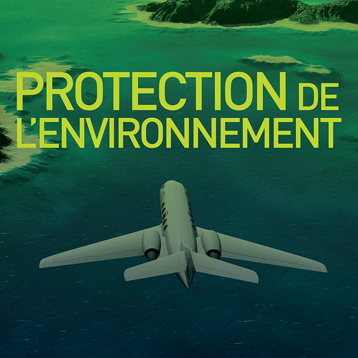Access to Environmental Protection