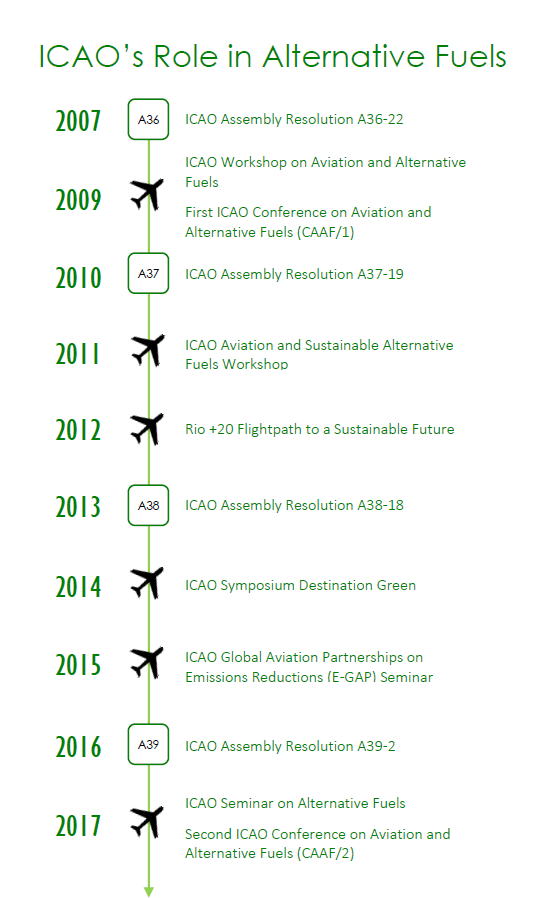 icao role